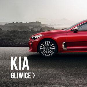Kia Gliwice - Euro-Kas
