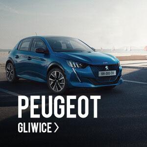 Peugeot Gliwice - Euro-Kas